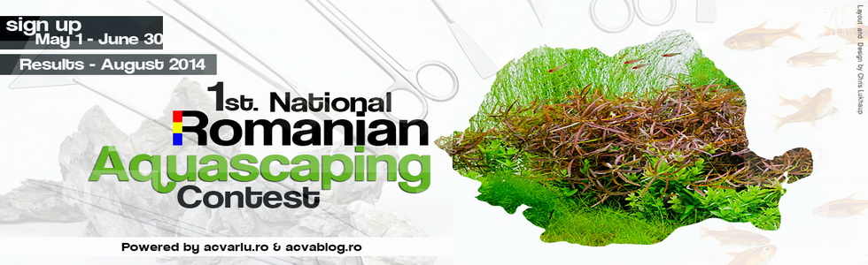 Romanian Aquascaping Competition