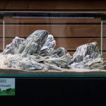 ukaps-Aquascaping-Experience-2016-18