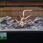 ukaps-Aquascaping-Experience-2016-19