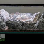 ukaps-Aquascaping-Experience-2016-21