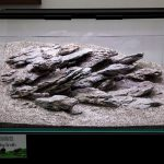 ukaps-Aquascaping-Experience-2016-22