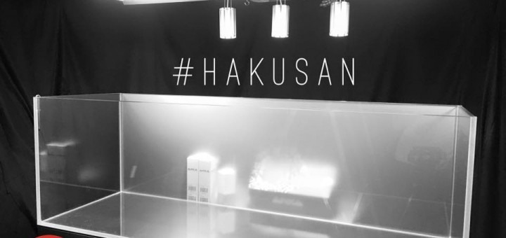 hakusan-aquascaping live event
