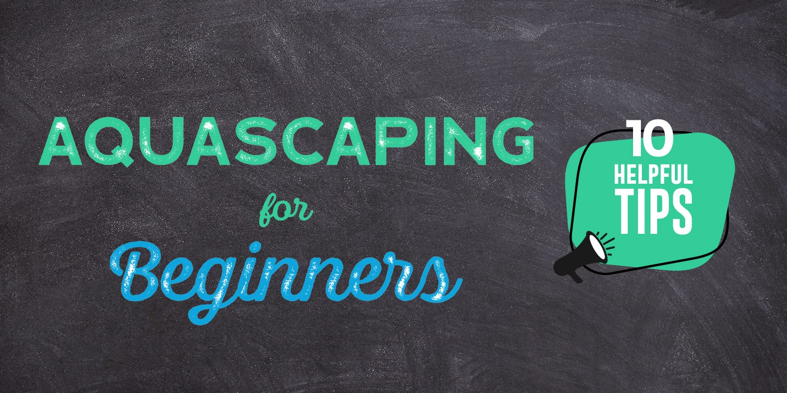 Aquascaping for Beginners: 10 Helpful Tips - Aquascaping Love