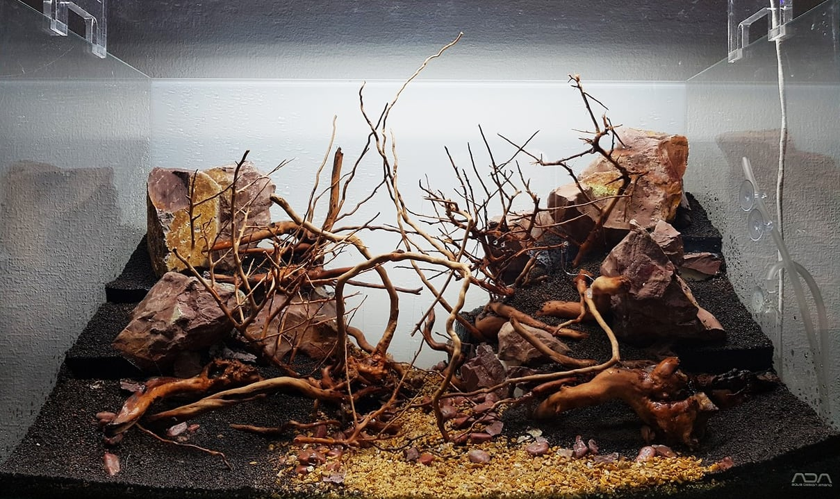 The Elements Of Aquascaping Rocks Driftwood Substrates Aquascaping Love